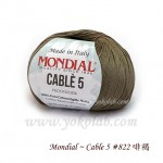 Cable 5 棉線 #822 啡褐
